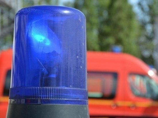 В Барнауле лоб в лоб столкнулись автобус № 20 и иномарка