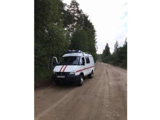 Первый пошел: в Марий Эл спасатели нашли заблудившуюся в лесу женщину