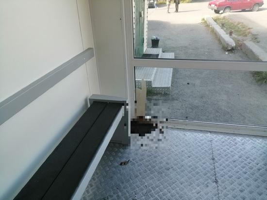 «Кто-то не сдержался»: теплую остановку в Лабытнанги превратили в туалет