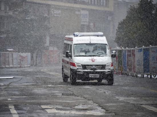 Жертвой опасного заболевания стал пекинский ветеринар