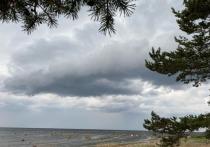Петербуржцам рассказали, где ждать ливень в ближайшие часы