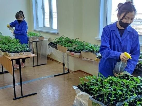 «Агростарт» получил грант ректора АГАТУ