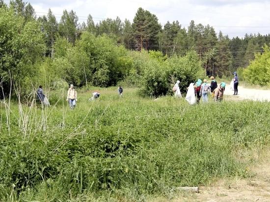 24 июля в парке Йошкар-Олы состоится эко-квест