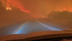 Мощные лесные пожары охватили западные районы США: кадры огня