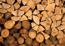 В Псковской области выявили преступную схему экспорта лесоматериалов