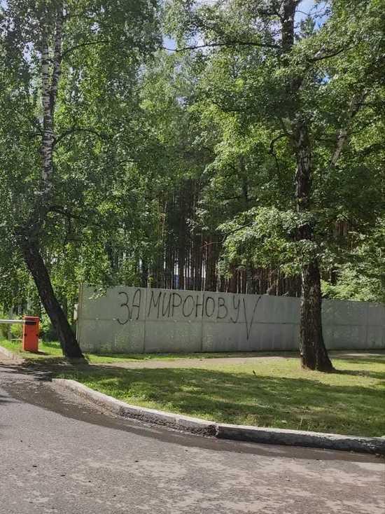 Кандидат в депутаты просит помощи в поиске вандалов, изрисовавших стены призывами голосовать за нее
