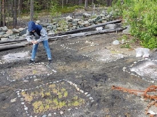 Кольские ученые-экологи снижают площадь загрязненных нефтепродуктами почв