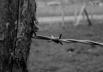 Издание 47.news, сообщившее о существовании в Ленобласти тайной частной подземной тюрьмы, рассказало о реакции силовых структур на сегодняшние публикации.