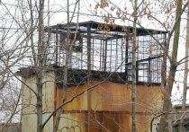 Массово избавляться от советского наследия в виде голубятен начали жители Московской области