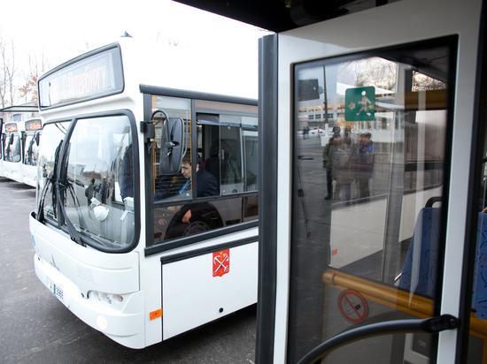 Две сотни водителей петербургских автобусов оштрафовали за нарушение ПДД