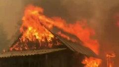 Лесные пожары разбушевались в Карелии: кадры огня