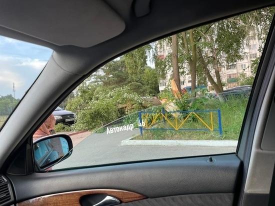 В Курске на ПЛК дерево упало на машину