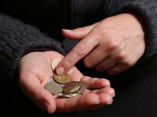 Власти Курского региона помогут преодолеть порог бедности 5,5 тысячи местным жителям