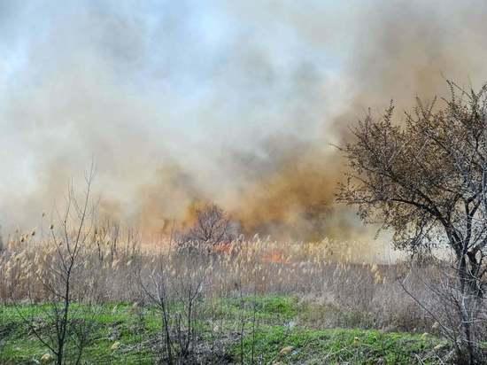 Въезд в волгоградские леса закрыли из-за жары до 9 августа