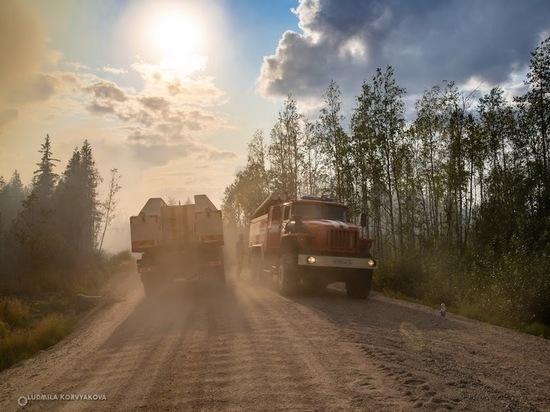 Площадь лесных пожаров в Карелии увеличилась до 5886 га