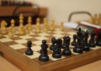 «Те, кто говорят, что понимают шахматы, ничего не понимают», говорил известный немецкий гроссмейстер Роберт Хюбнер