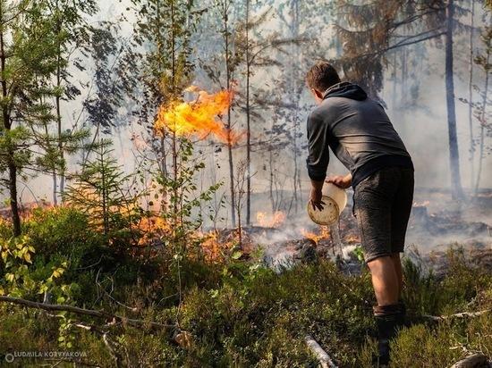 Глава МЧС России заявил, что пожарные успешно отстояли Найстенъярви