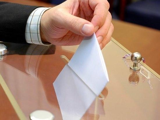 Пенсионерка от партии «Зелёные» подала документы на выборы в Госдуму на Братском округе