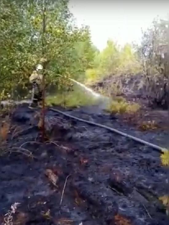 В Кемском районе загорелся торф
