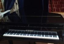 Новая мебель и инструменты доставили в детскую музыкальную школу Пскова