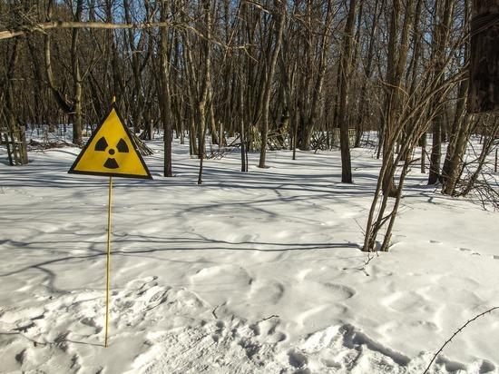 Участок с превышением уровня радиации под Медвежьегорском очистят