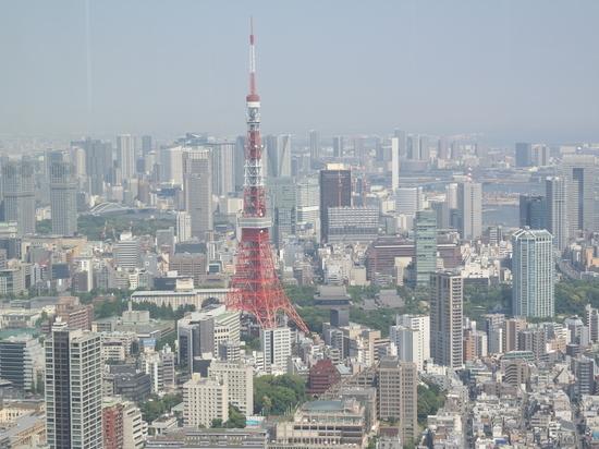 Глава оргкомитета Олимпиады в Токио не исключил ее отмены