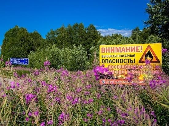 """20 июля: главные новости дня по версии """"МК в Карелии"""""""