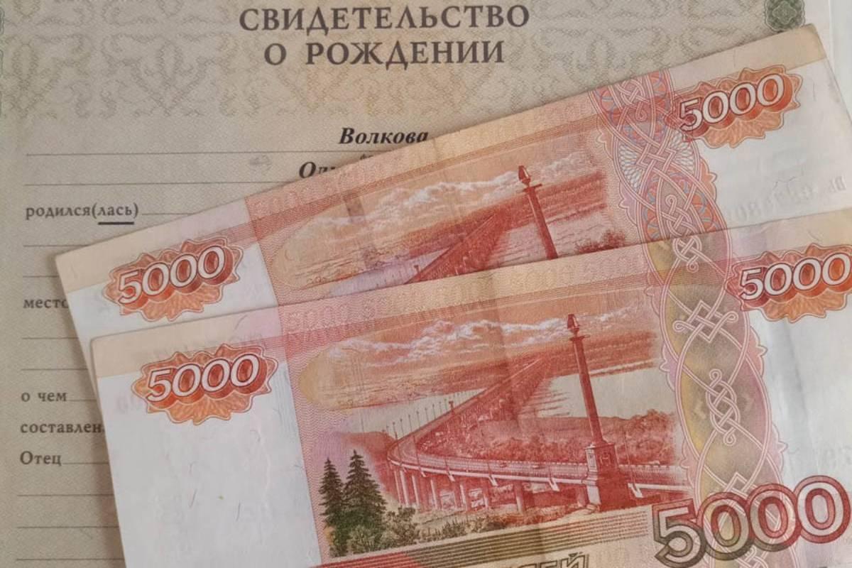Костромские родители за неделю подали 50 тысяч заявлений на получение «путинских пособий»