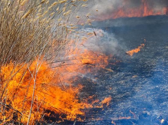 МЧС предупредило о появлении запаха гари в Астрахани