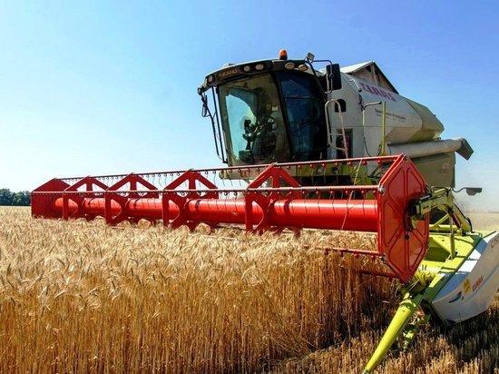 Нижегородские аграрии собрали первые 60 тысяч тонн зерна