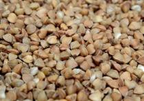 Производители гречки в Алтайском крае сообщили, что останавливают производство крупы