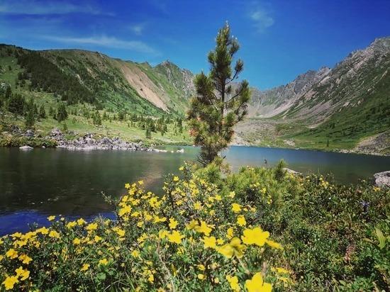 Швейцарским Альпам и не снилось