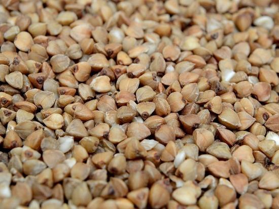 Алтайские производители гречки заявили об остановке производства