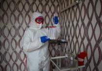 Эксперты рассказали о тревожной ситуации на полуострове и мерах борьбы с пандемией