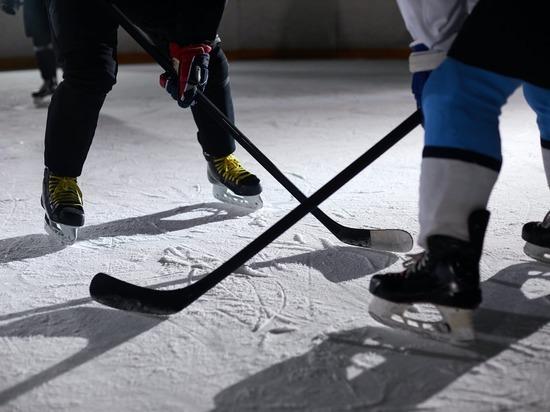 Хоккейная коробка появится в Серышеве к концу года