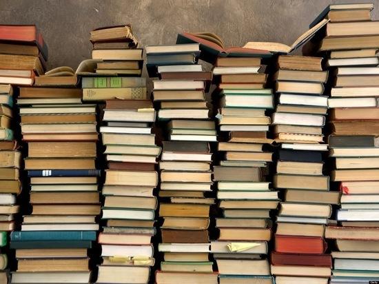 Брянской воспитательной колонии подарили более 80 книг