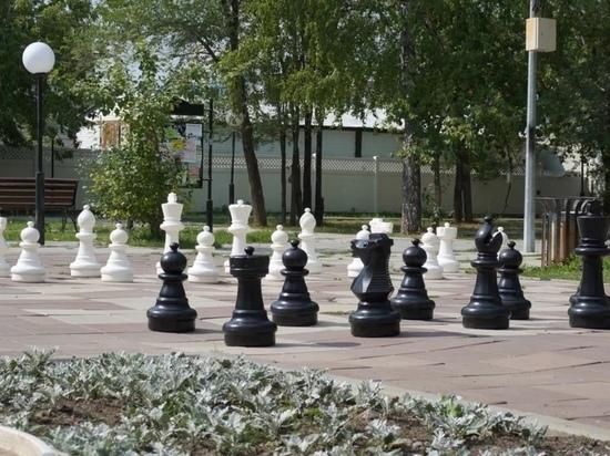 Тюменские шахматисты отметили международный День шахмат