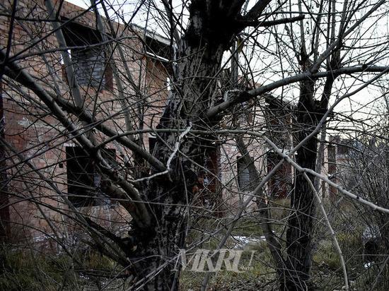Савватеева: Идет проверка по сити-менеджеру Читы из-за «заброшки» на Токмакова
