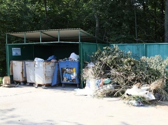 Новый начальник регионального оператора отходов пообещал чистоту в Серпухове