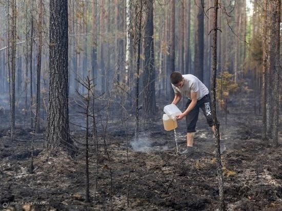 Карелия получит 100 млн рублей на борьбу с пожарами