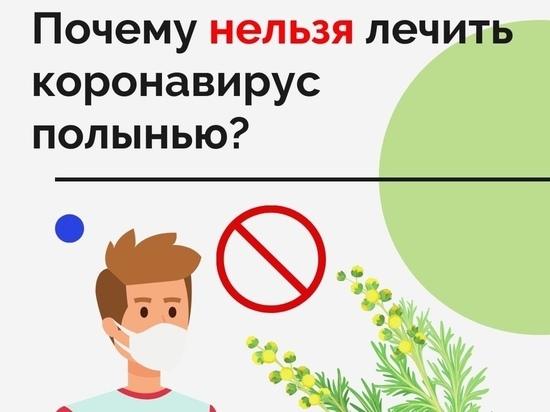 Ямальские врачи призвали северян не лечить коронавирус полынью
