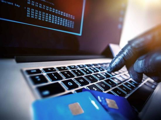 Число интернет-мошенничеств в Казахстане возросло в 2,3 раза