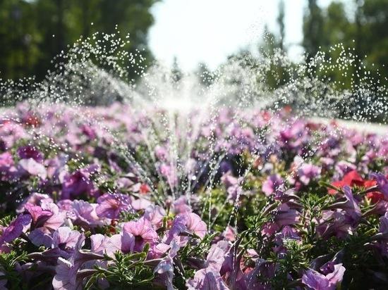 После долгой жары в Волгоград придут дожди и похолодание до +25°С
