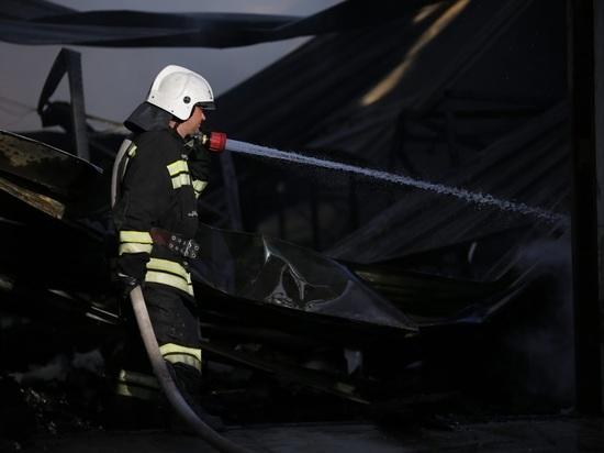 Под Волгоградом в ночном пожаре в СНТ погибли два человека