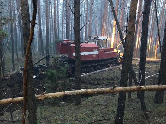12 пожаров потушили в лесах Приангарья за сутки