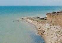 Наталья Костенко призывает спасти Таманский залив от чёрных дайверов