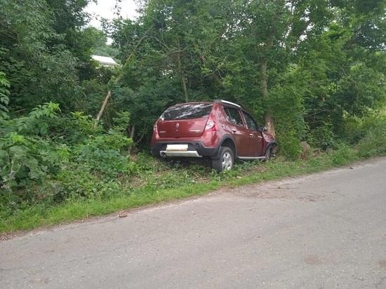 В Белгородской области водитель иномарки попал в больницу после столкновения с деревом