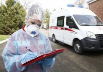 На Кубани зафиксировали 246 случаев заболевания ковидом