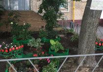 Цветник в память о погибшей от коронавируса родственнице устроили  жители одного из домов в Северо-Западном округе столицы