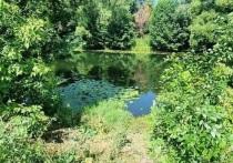 В МЧС по Белгородской области опубликовали печальную статистику по количеству погибших на воде